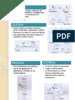 bioquimica-expo.pptx