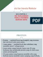 Makromolekul Dan Interaksi Molekular