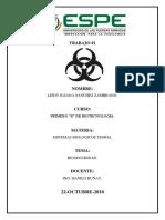 bioseguridad leidy sistemas.docx