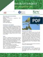 Vernonia_factsheet.pdf