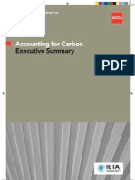Accounting for Carbon (Exec Summary)