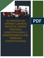 PROCESO DE AMAPRO LABORAL.docx
