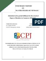 CPJ PROJECT FILE.pdf