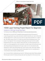10000 Layer Farming Project Report for Beginners
