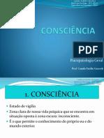 Aula 6 - Consciência