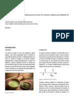 Protocolo práctica 2.docx