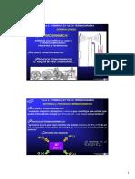 GEP FII 1718 10redu T5 Ley1 Termo.pdf