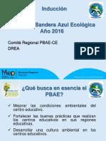 Formato de Presentacion Para La Inducion PBAE-CE 2016