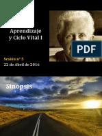 etapas del desarrollo.pdf