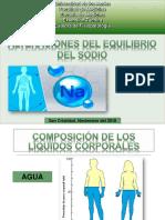 Alteraciones Del Equilibrio Del Sodio.
