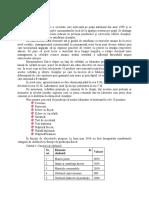 exemplu productie (proiect   CM).docx