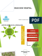 reproduccion vegetal.pdf