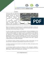 Descripción Petrocalcográfica Ch-8403