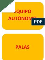 CAMARA DE SALVATAJE.docx