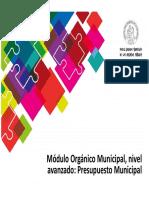 45 Orgánico Municipal Avanzado Presupuesto Municipal.pptx