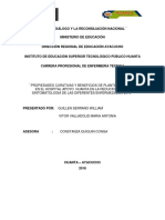Investigacion Quiquin (2)