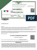 Rhsc Brief Pregnancy A4 SPANISH