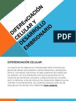 1. Diferenciación Celular y Desarrollo Embrionario.pdf