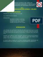 EM_I_CAMARAS Y PILARES, TAJEO POR SUBNIVELES_07_06_2018.pdf