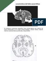 Lesion Axonal Difusa Imagenes