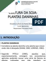 plantas-daninhas-soja---f-celoto.pdf