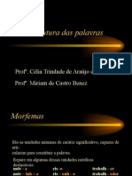 Português PPT - Estrutura das Palavras I