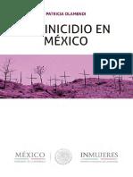 Femincidio en México 2017.pdf