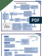 Organizador Gráfico practica 1 instrumentacion