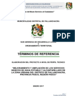 TDR AGUA  PALLANCHACRA_2017.docx