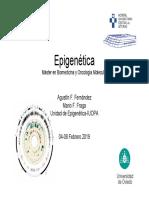 Mecanismos epigeneticos y métodos de análisis 2019.pdf