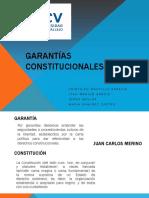 Garantc3adas Constitucionales Final3 1