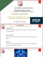 Clase II - Estructura y Desarrollo de Células y Organos Del Sistema Inmune