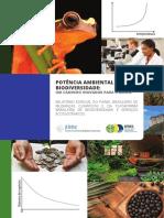 relatorio v2.3.pdf
