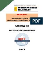 MODULO 01 - TITULO 12 - CONSORCIOS.docx