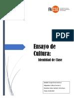Ensayo 1 Sergio Flores Cultura C.S.docx