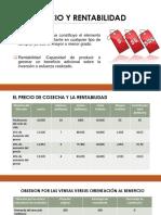 PRECIO Y RENTABILIDAD.pptx