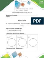 Protocolo Para El Desarrollo Del Componente Practico - Tarea 4
