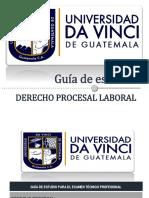 10. Guía de Derecho Procesal Laboral