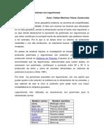 4 Asociación de Leguminosas con Gramíneas.docx