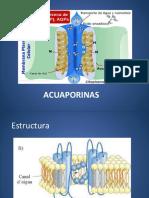 acuaporinas-150129130236-conversion-gate01.pdf