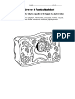 CellWorksheet pdf.pdf