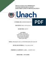 NECESIDADES DE MASLOW.docx