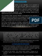EXPOSICION-PUZOLANA-CORREGIDO-FINAL.pptx