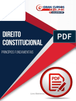 1201050-principios-fundamentais.pdf