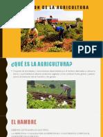Evolucion de La Agricultura