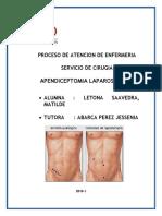 PAE DE CIRUGIA2.docx