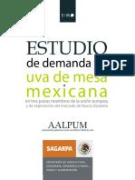 DEMANDA DE UVA MEXICO.pdf
