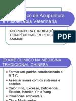 Curso Básico de Acupuntura e Fisioterapia Veterinária
