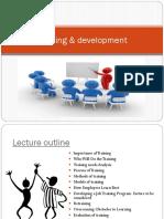T &D program