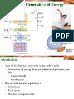 Metabolism Generation of Energy .ppt